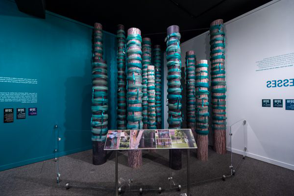 "Teal Ribbons in the exhibit ""Finding Our Voice: Sister Survivors Speak"""